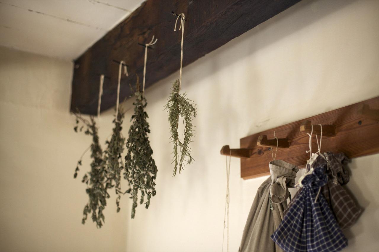 Jak a kde sušit bylinky?