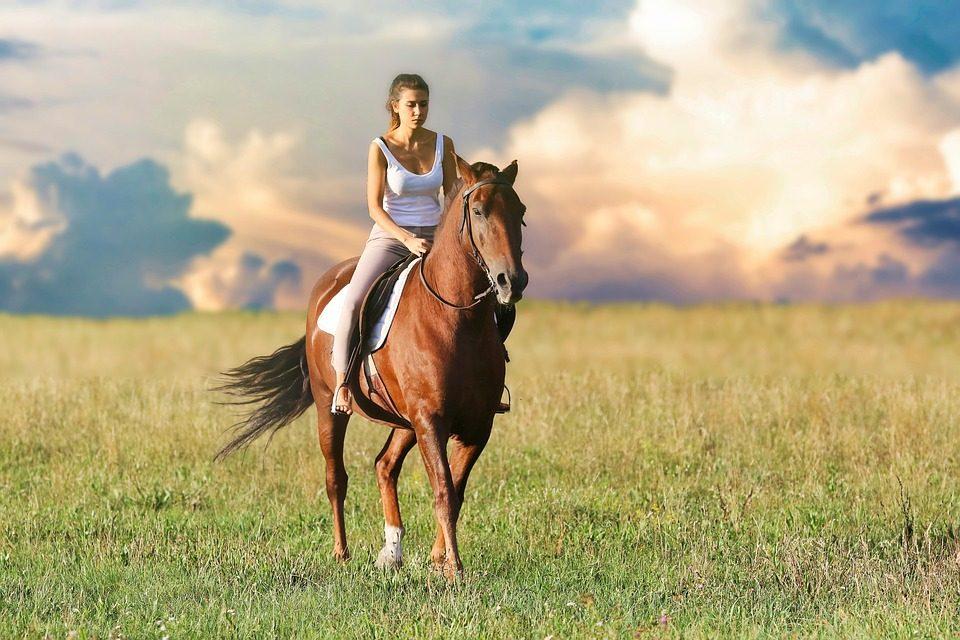 Jak začít sjízdou na koni